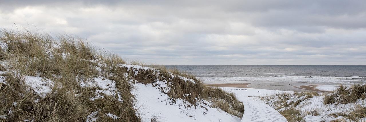 Avkopplande vinterpaket på Tylebäck