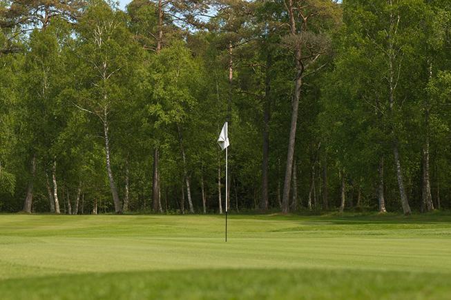 <p>Golf</p>