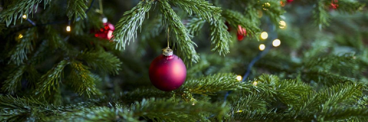 Jul på Tylebäck